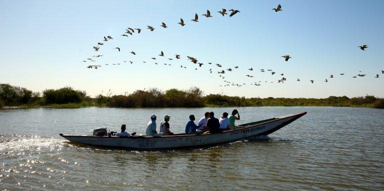 In Senegal