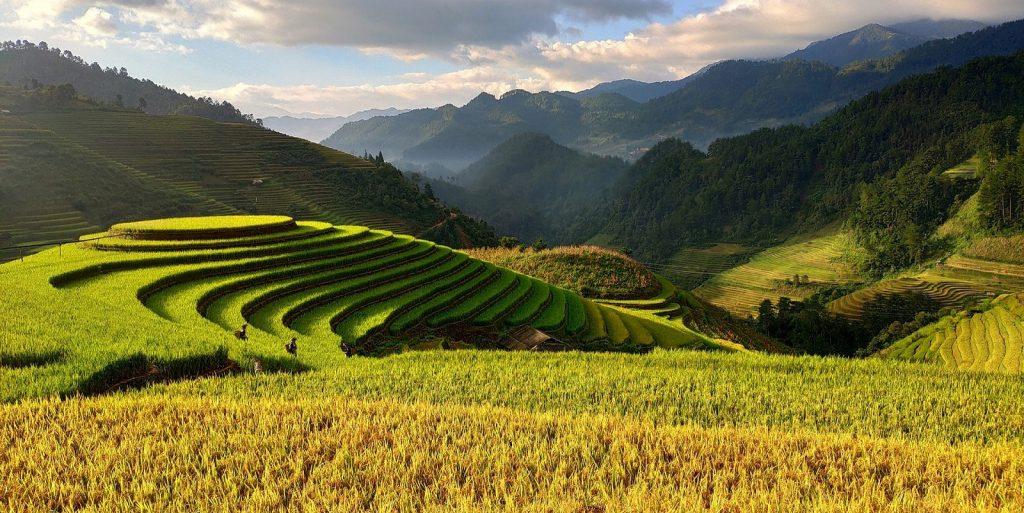 Scènes de vie au Vietnam