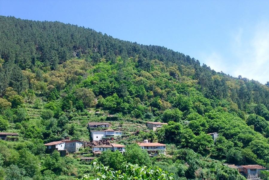 Wijnroute Galicia