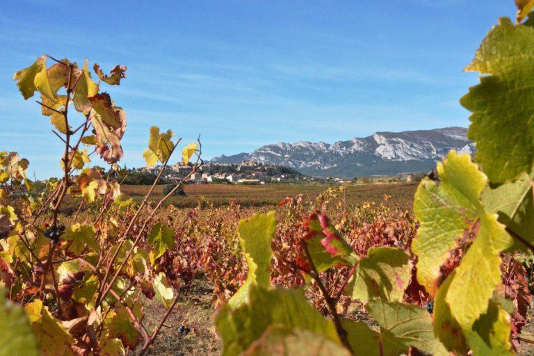 Wijntoerisme: de Riojastreek te verkennen